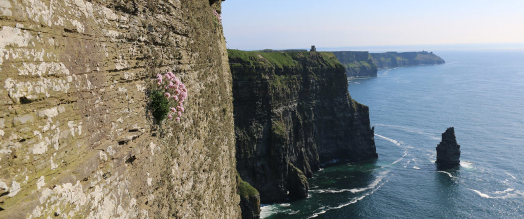 europe-ireland-cliffs-of-moher-tours