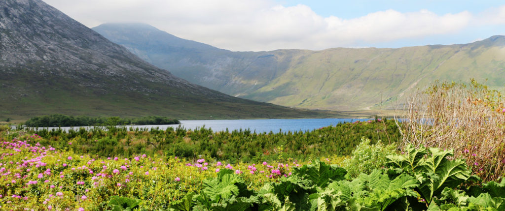 europe-ireland-connemara-tours