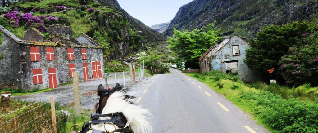 europe-ireland-purple-mountains-dunlow-gap-tours