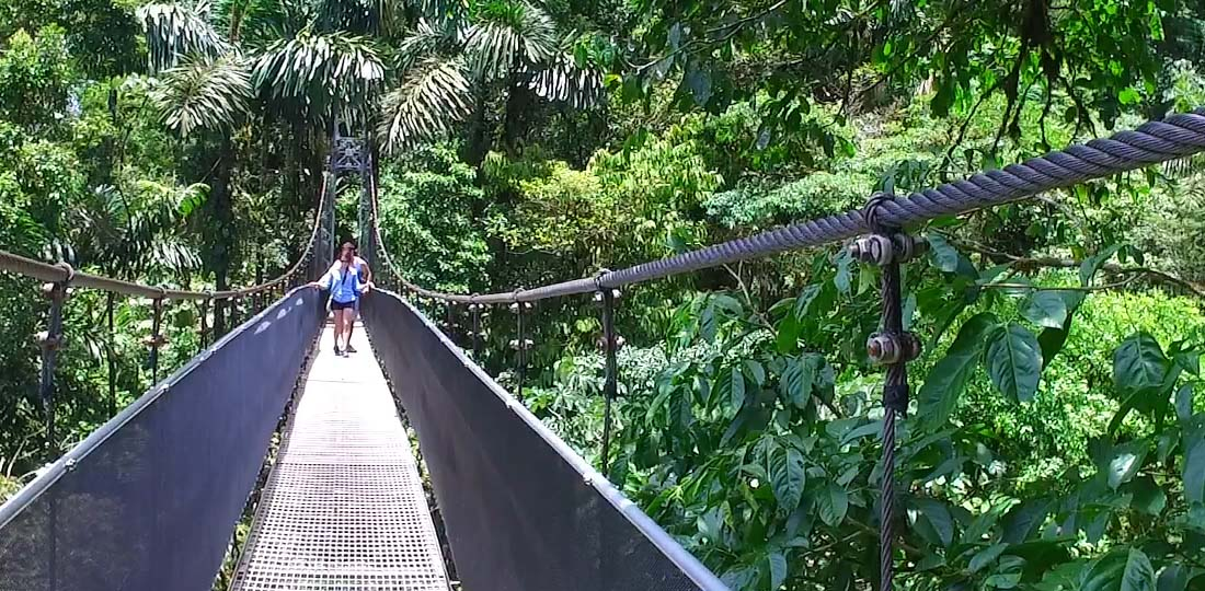 Travel-2020-central-america-costa-rice-pure-vida-hanging-bridge-mistico-park3