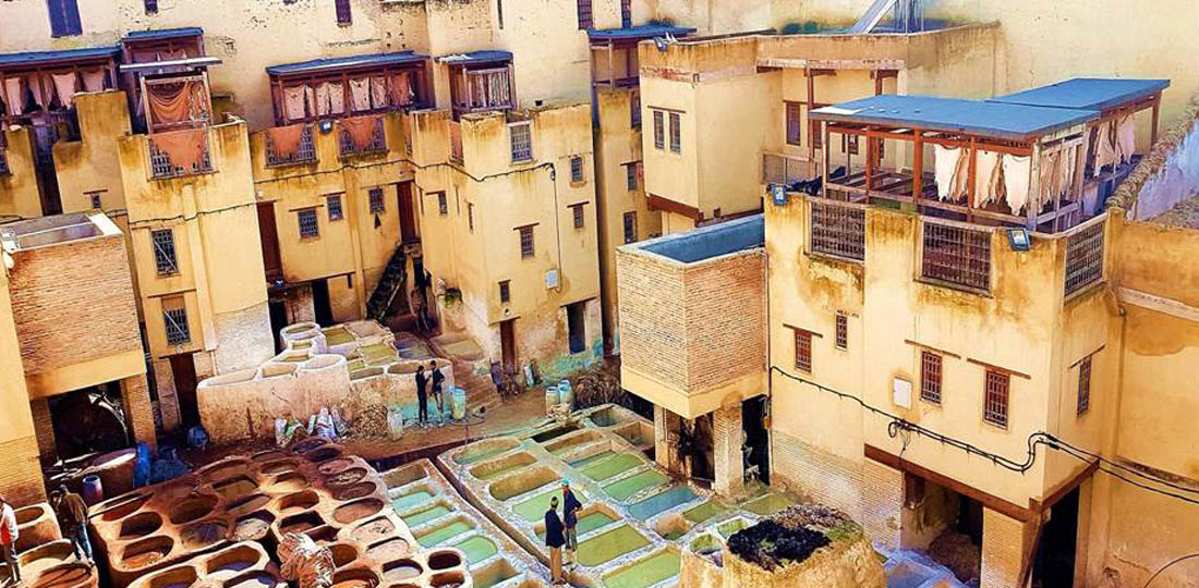 Travel-2020-africa-morocco-fes-tannery-lk